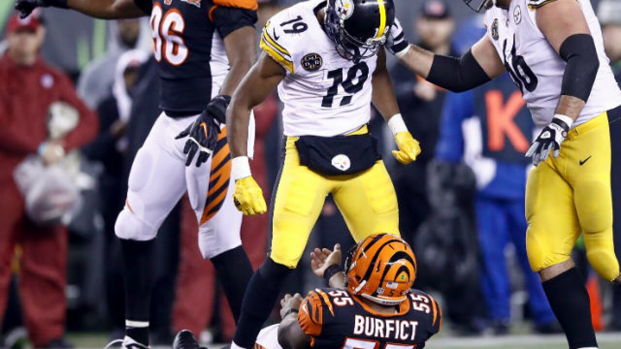 Pittsburgh Steelers cry foul over NFL suspension rulings