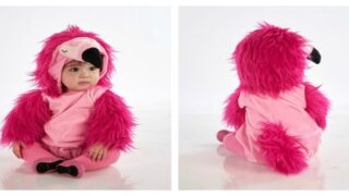 Pottery Barn Kids Just Rolled Out New Halloween Costumes, Including This Adorable Flamingo Costume