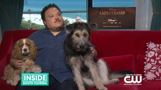 "Disney Classic ""Lady and the Tramp"" Comes Back to Life as a New Live-Action Film"