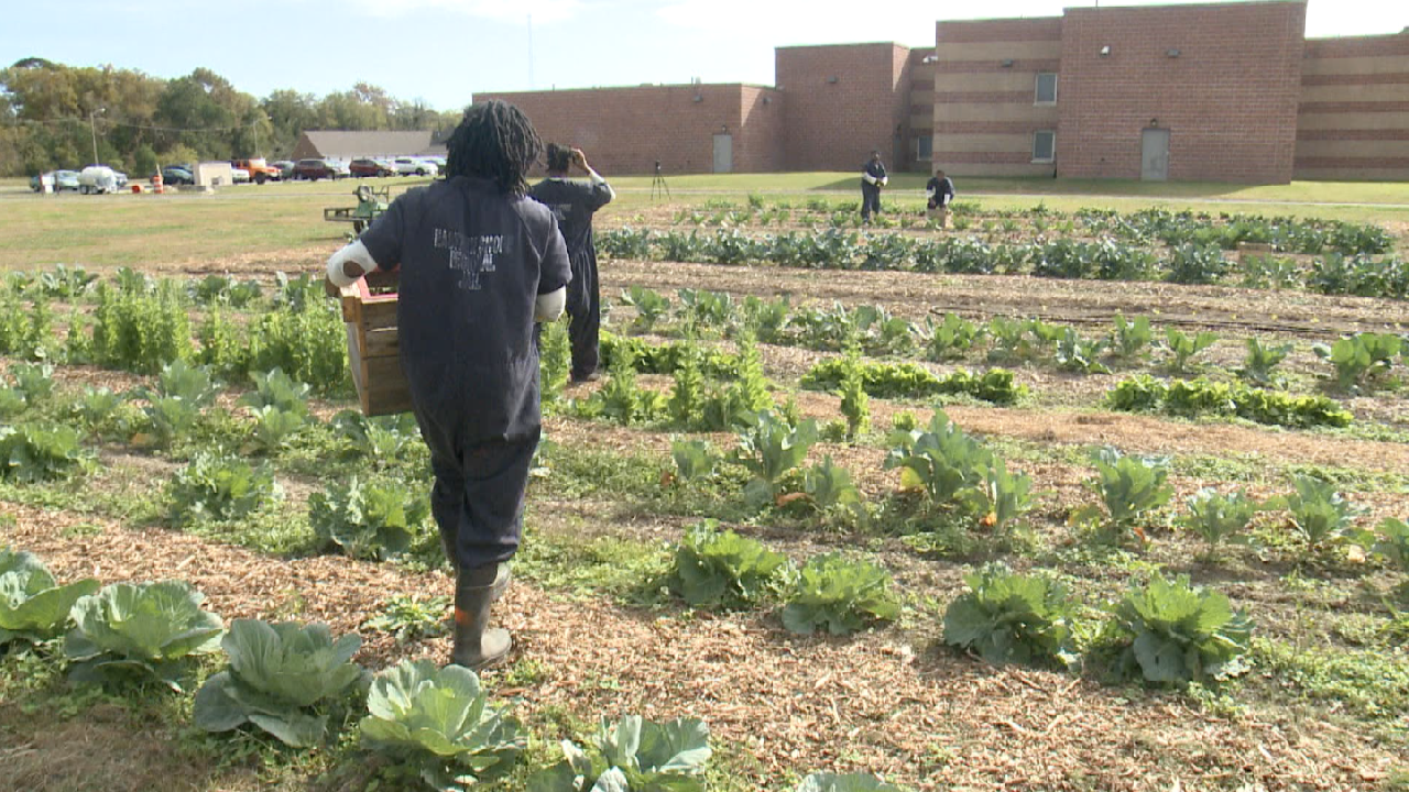 Growing seeds of hope: Eastern Shore jail re-entry program prepares inmates for their future
