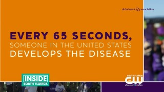Celebrate Wellness: Gum Disease Alzheimer's Link