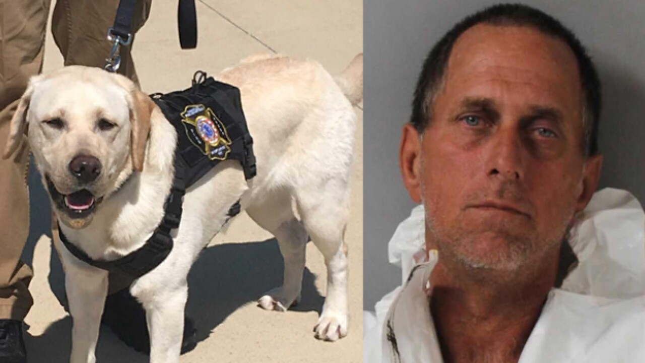 Arson Detection Dog Helps Sniff Out Arson Suspect