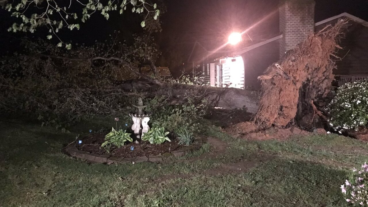 Neighbor says horse was killed in Brunswick Countystorm