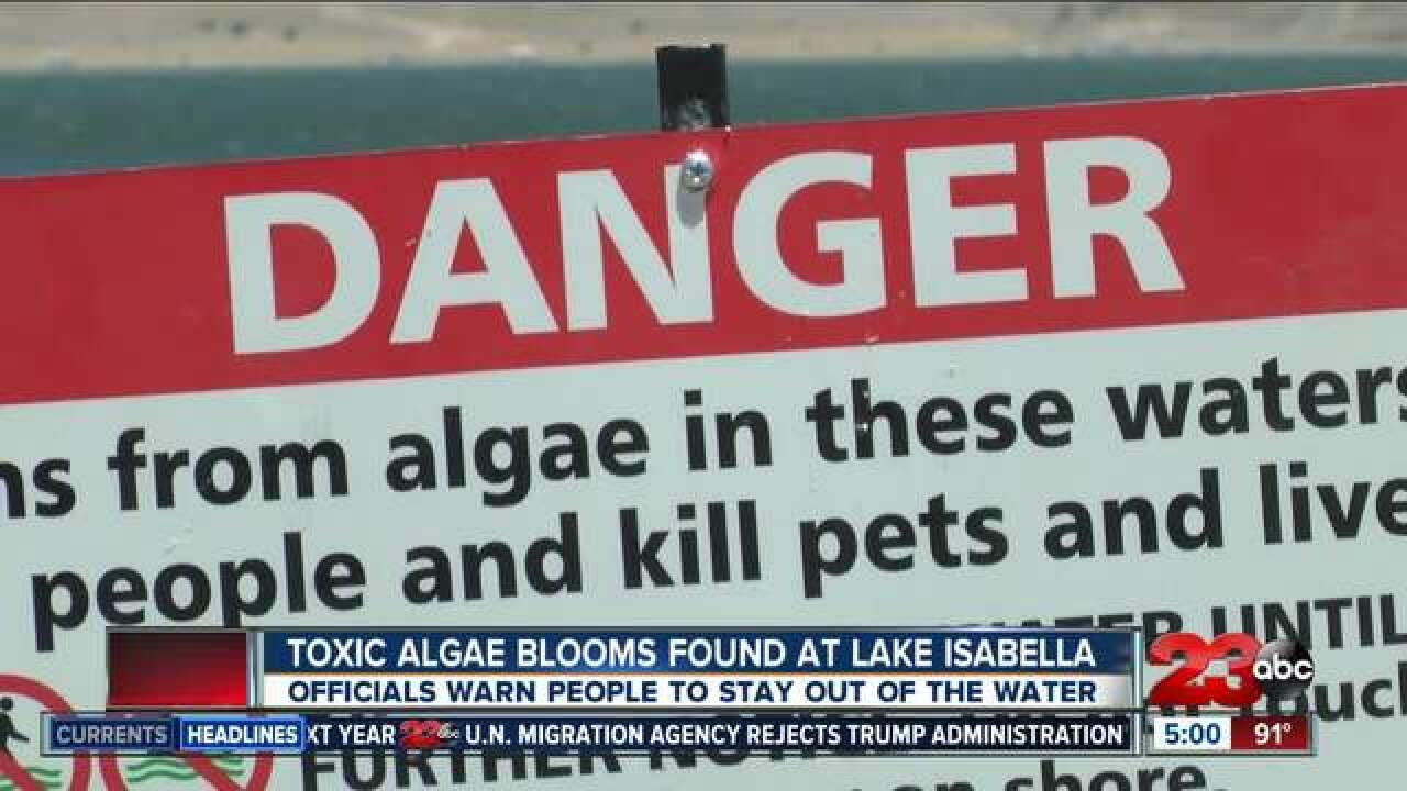 Kern County Health Department discuss deadly blue-green