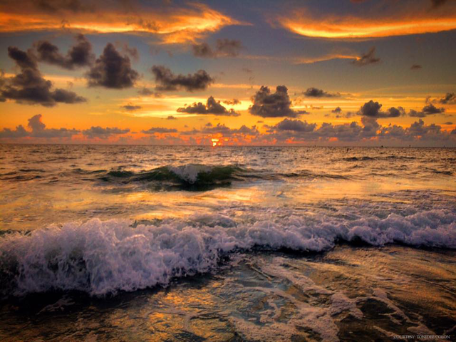 GALLERY: Best photos submitted by viewers of Tampa Bay