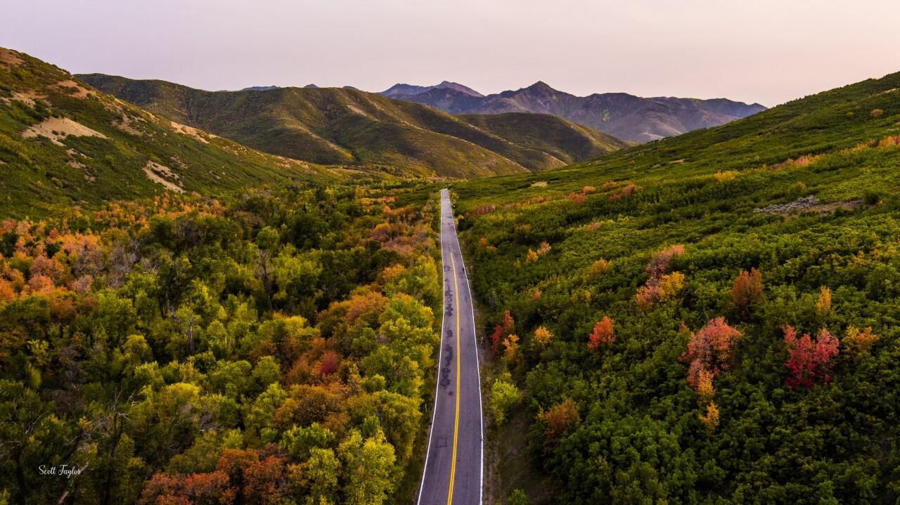 Scott Taylor Emigration Canyon.jpg