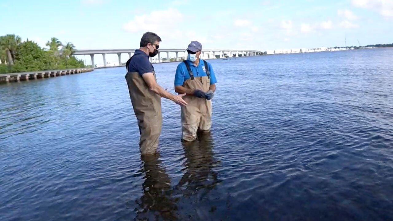 Mark Perry and Michael Williams look for oysters in the St. Lucie Estuary on March 30, 2021