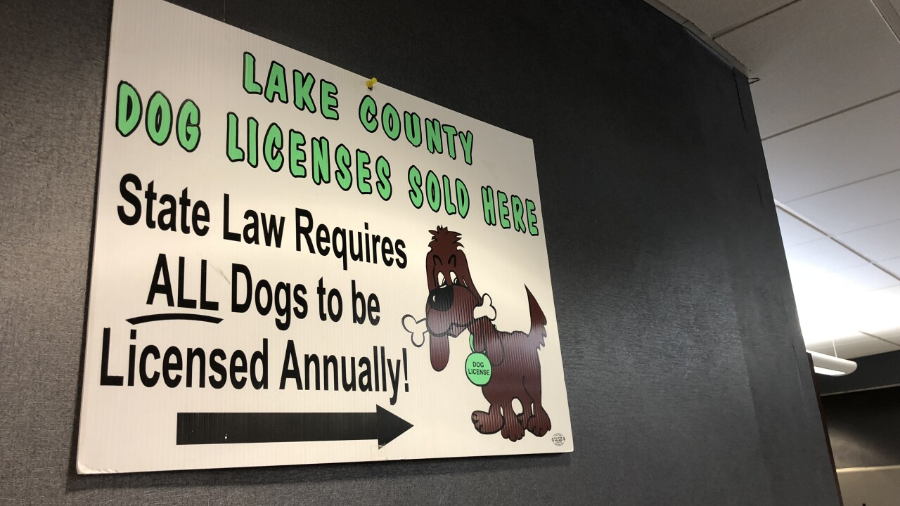 Fake dog license website