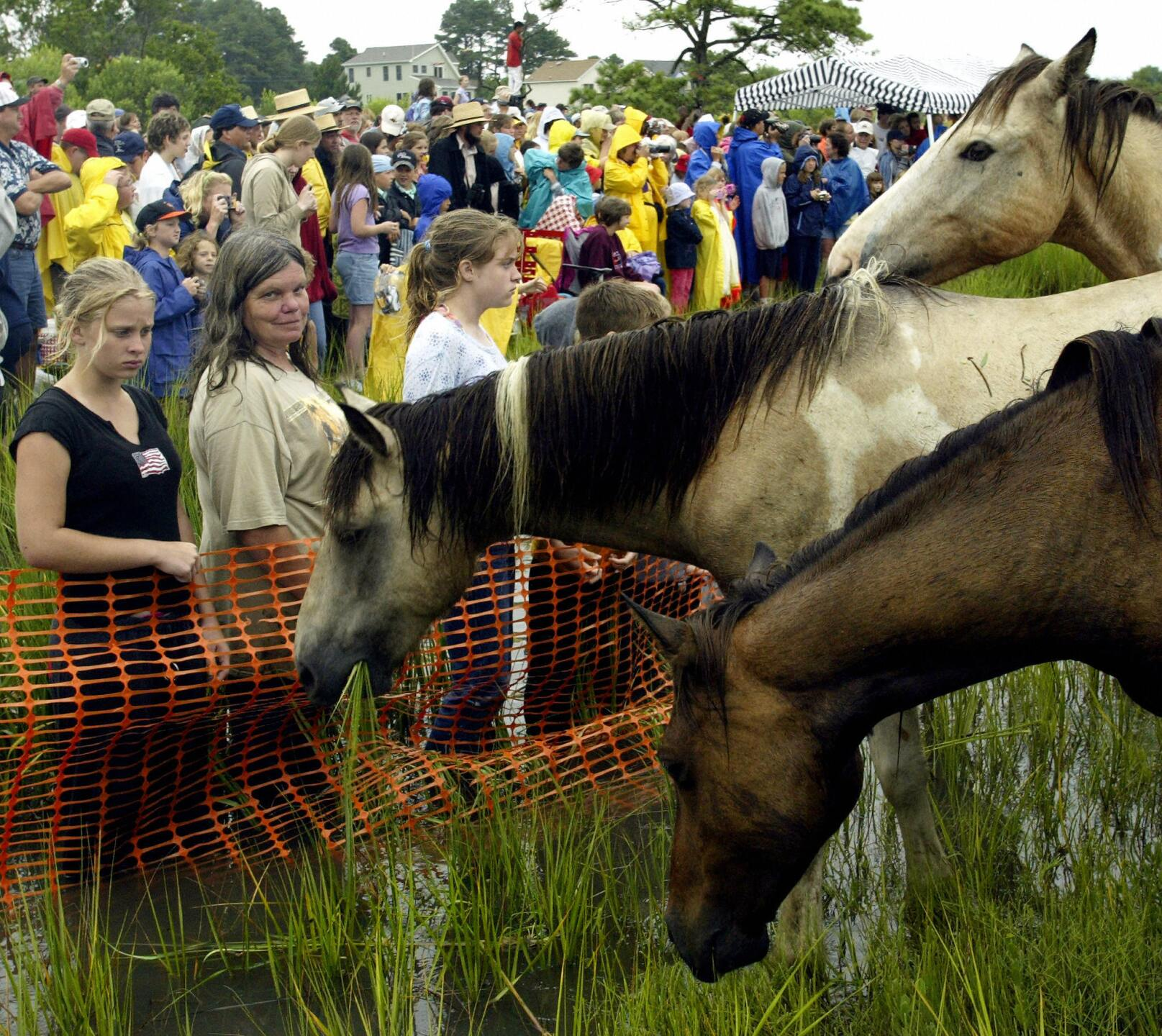 Photos: Chincoteague Volunteer Fire Company celebrates 91 years of PonyPenning