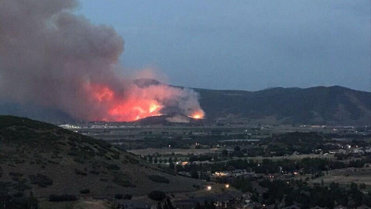 Big Hollow Fire