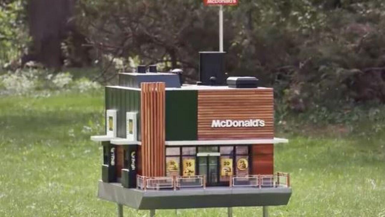 McDonald's hive.JPG