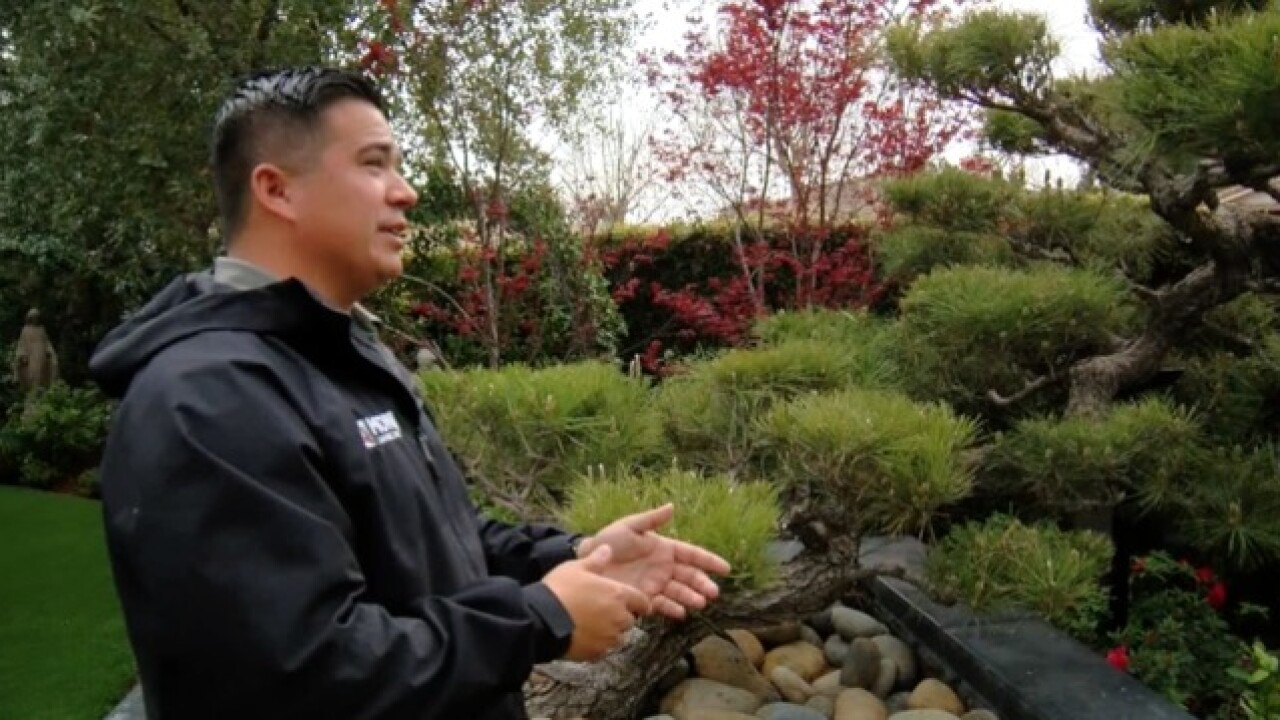 Made in Kern County: Monji Landscape Company