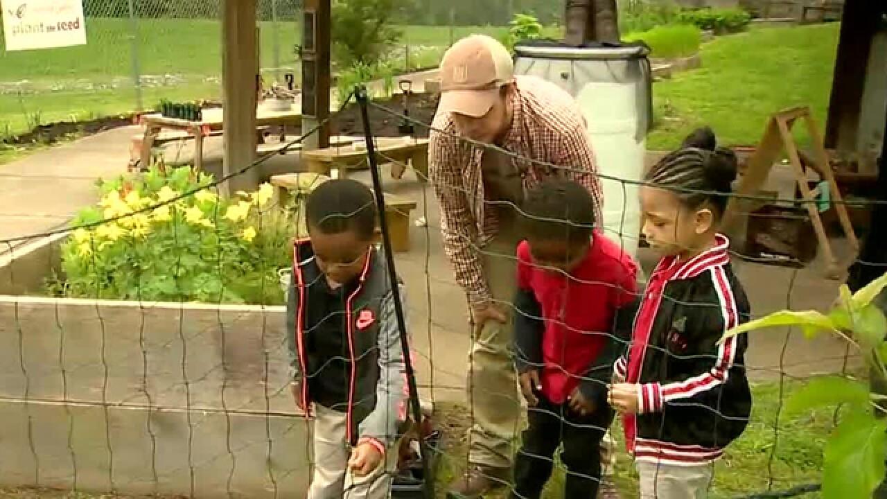 School Patrol: Davis Center Students Interact With Chickens