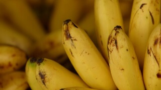 Are Bananas Healthy?