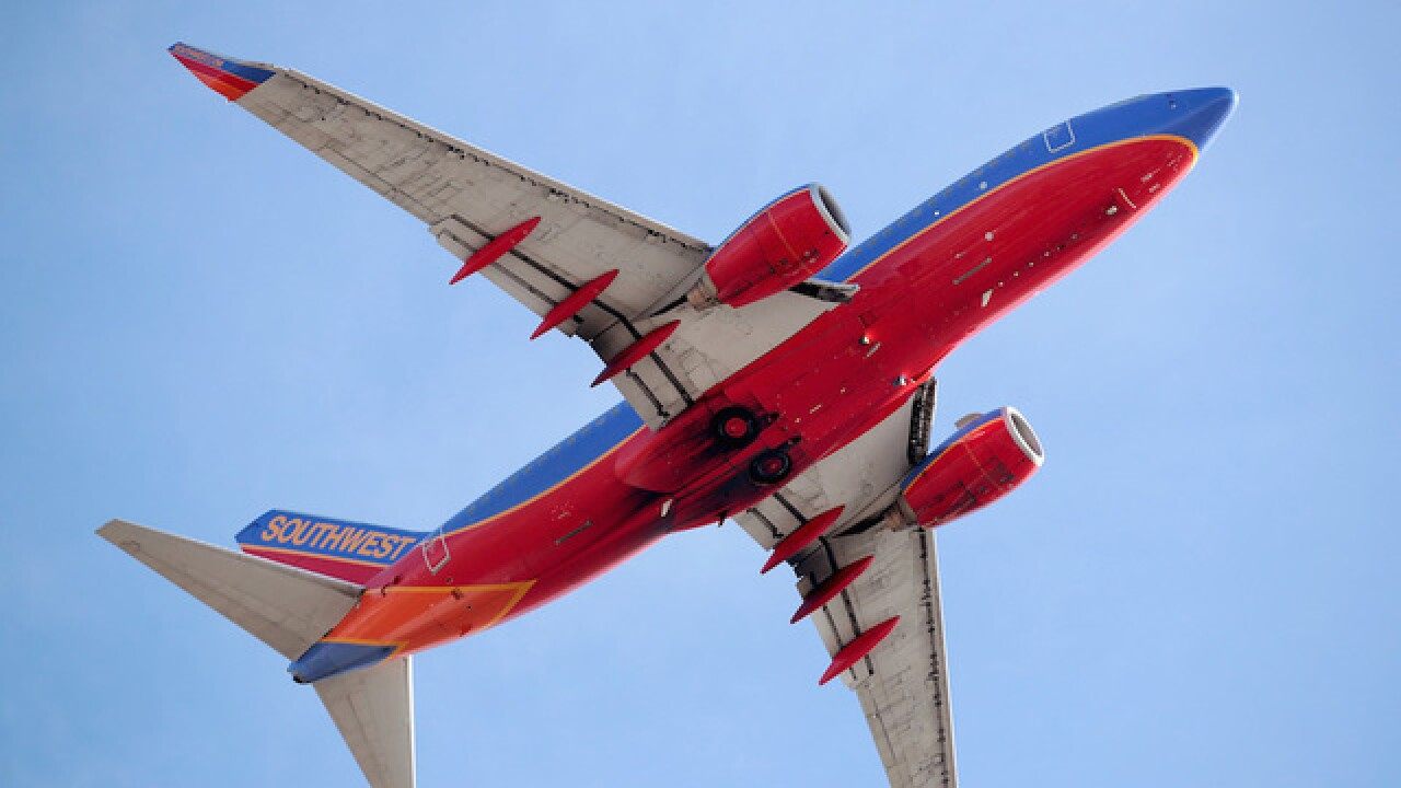 Southwest Airlines Says Only Cats And Dogs Allowed As Emotional