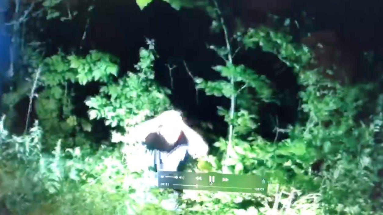 Footage of arrest of Robert Dick in a wooded area in West Salem.