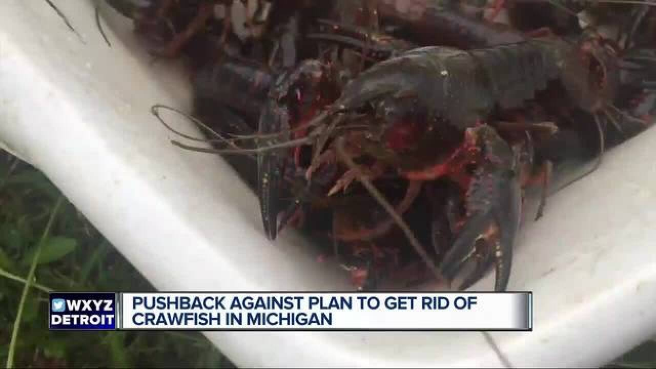 Pushback against getting rid of crawfish in MI