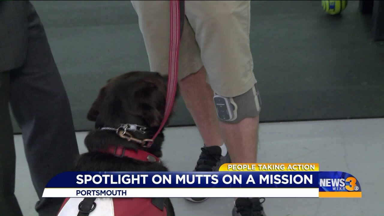 Local former drill sergeant helps provide service dogs for veterans and firstresponders