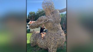 Bamboo-Sculptures-Spring-up-in-Tampa-front-yard.png