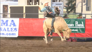 Bull riding at ExpoPark.png