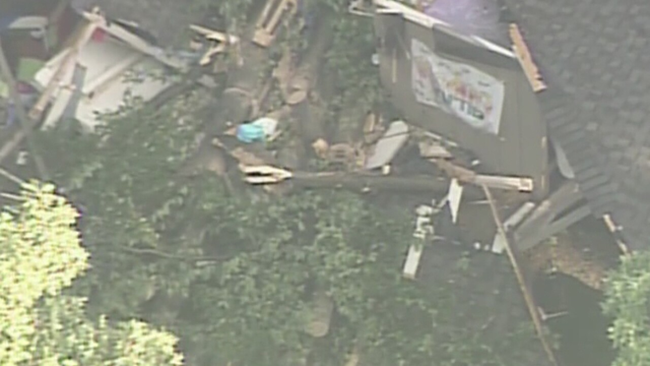 Girl dies at camp when tree falls on cabin