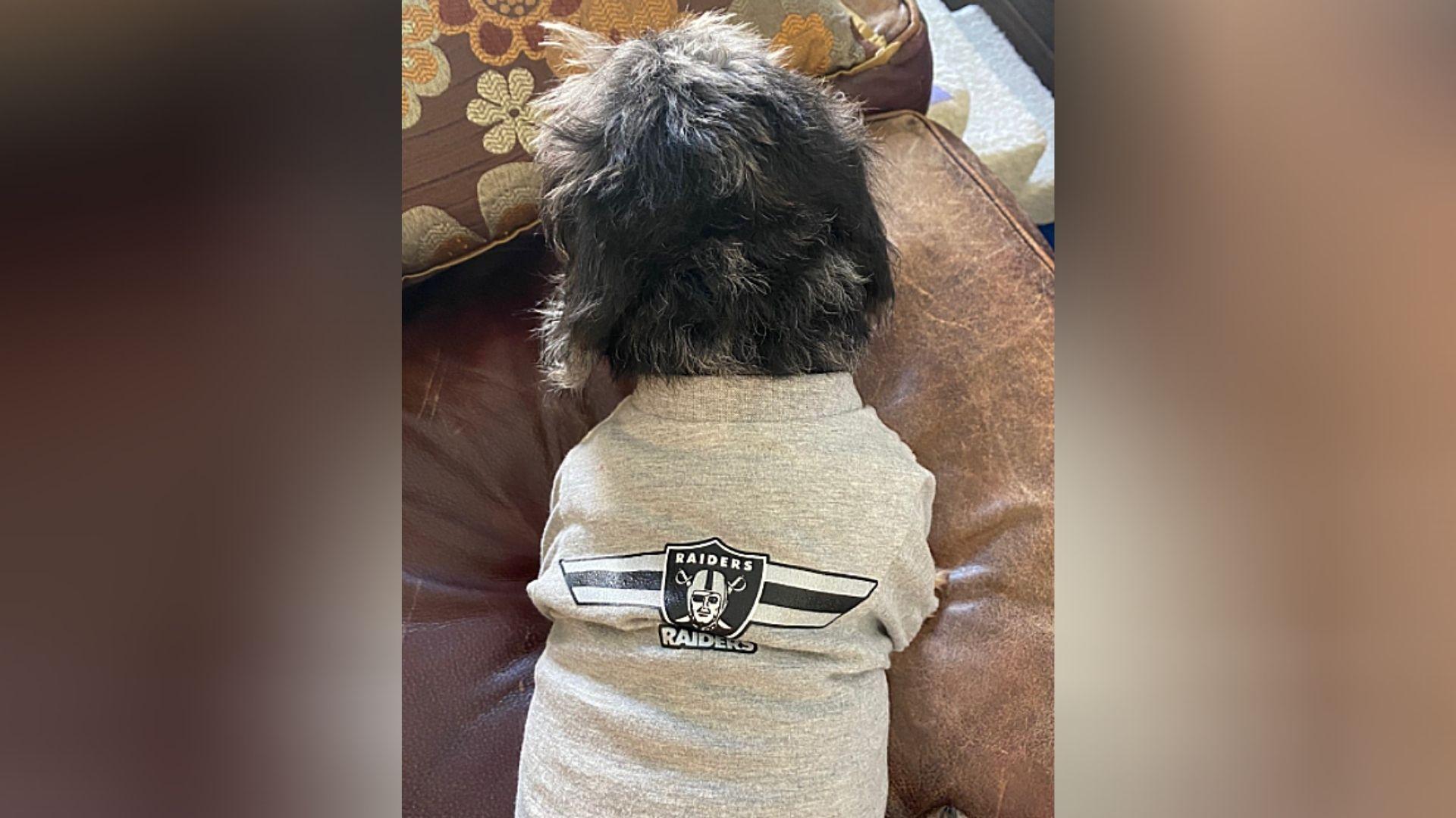 Raiders fans - Susan Hilgers.jpg