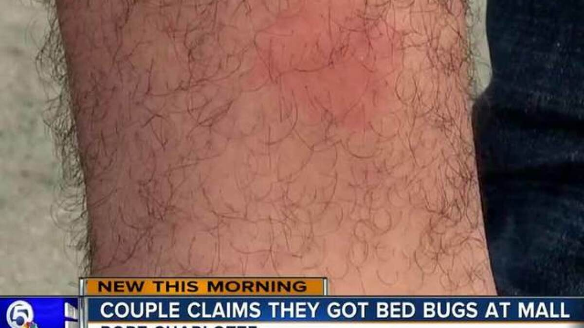 Florida Couple Says They Got Bed Bugs From Port Charlotte Mall