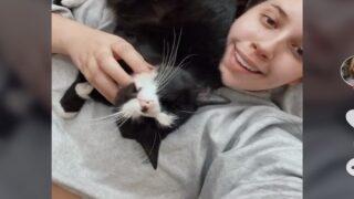 Cat Locked Out Of Bathroom Seeks Revenge On His Owner In Hilarious Video