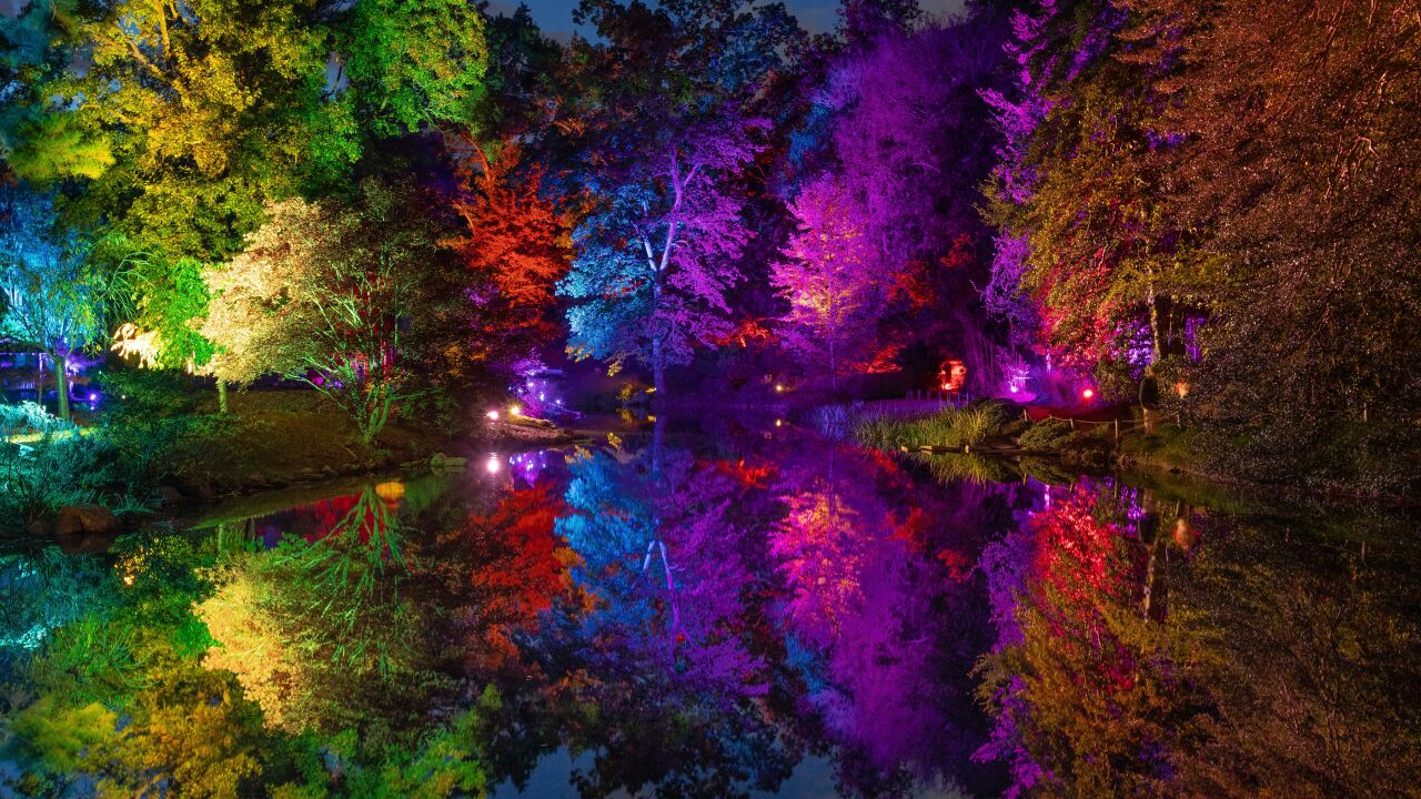Interactive Garden Glow Shines At Maymont You Can Control The Light