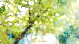 WX Raindrops Window Spring.png