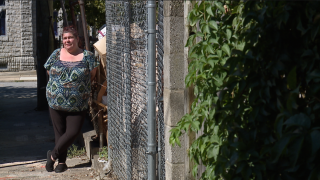 Woman buys pellet gun to fight off rats in neighbor's garbage filled property