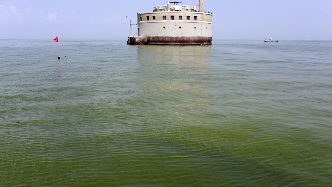 NOAA predicts algae bloom in Lake Erie to be less severe for 2020 season than in 2019