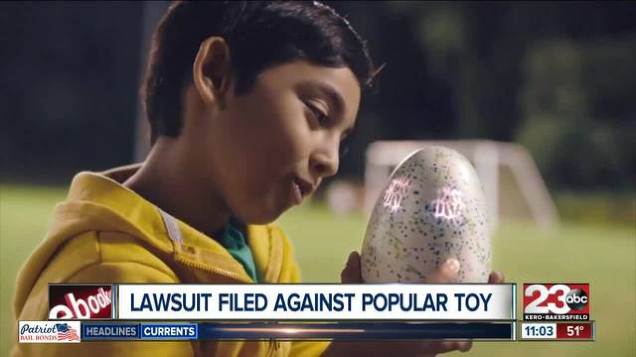 Local woman sues company behind Hatchimals