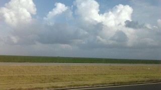 Cumulus_CLouds51915.jpg
