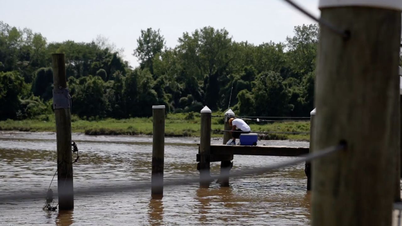 Many people fish, boat and swim in the country's waterways, but monitoring their bacteria levels can be a time-consuming process. New technology seeks to change that and provide the most up-to-date information, by tracking bacteria levels every five minutes.