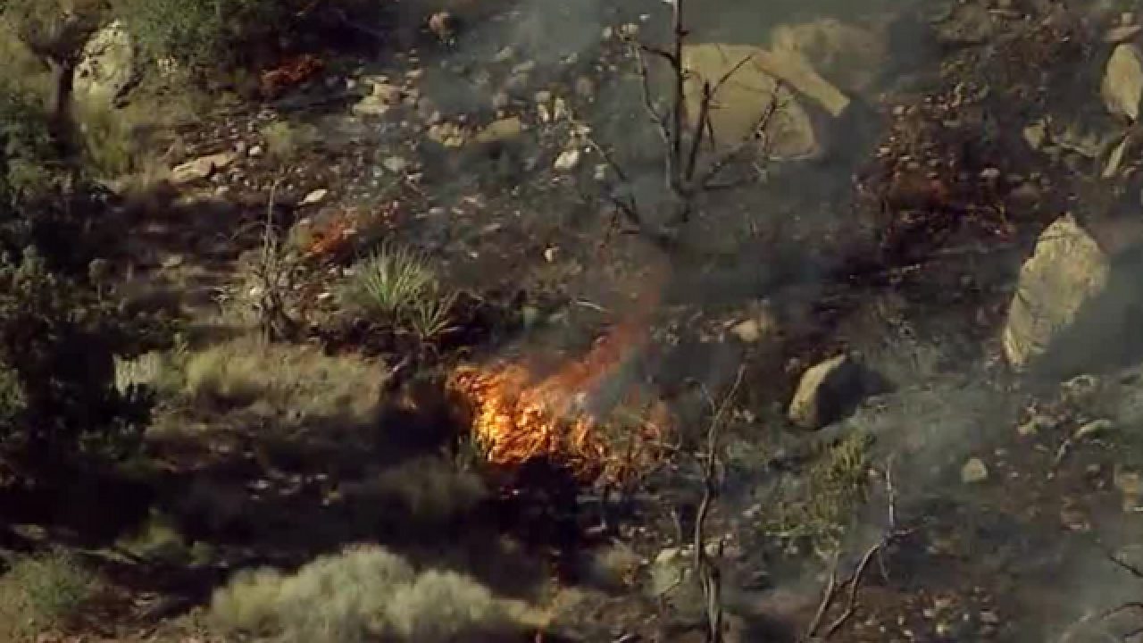 Fire burns 5 to 10 acres in Red Rock Canyon