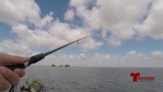 recuperacion guia de pesca 0622.jpg