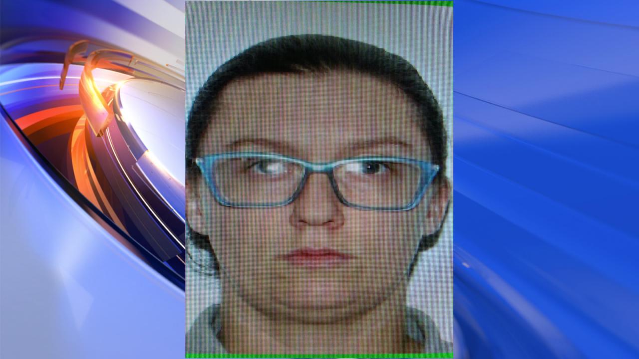 Suspect in custody after woman shot at Williamsburg BudgetInn