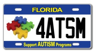 autism plate.jfif