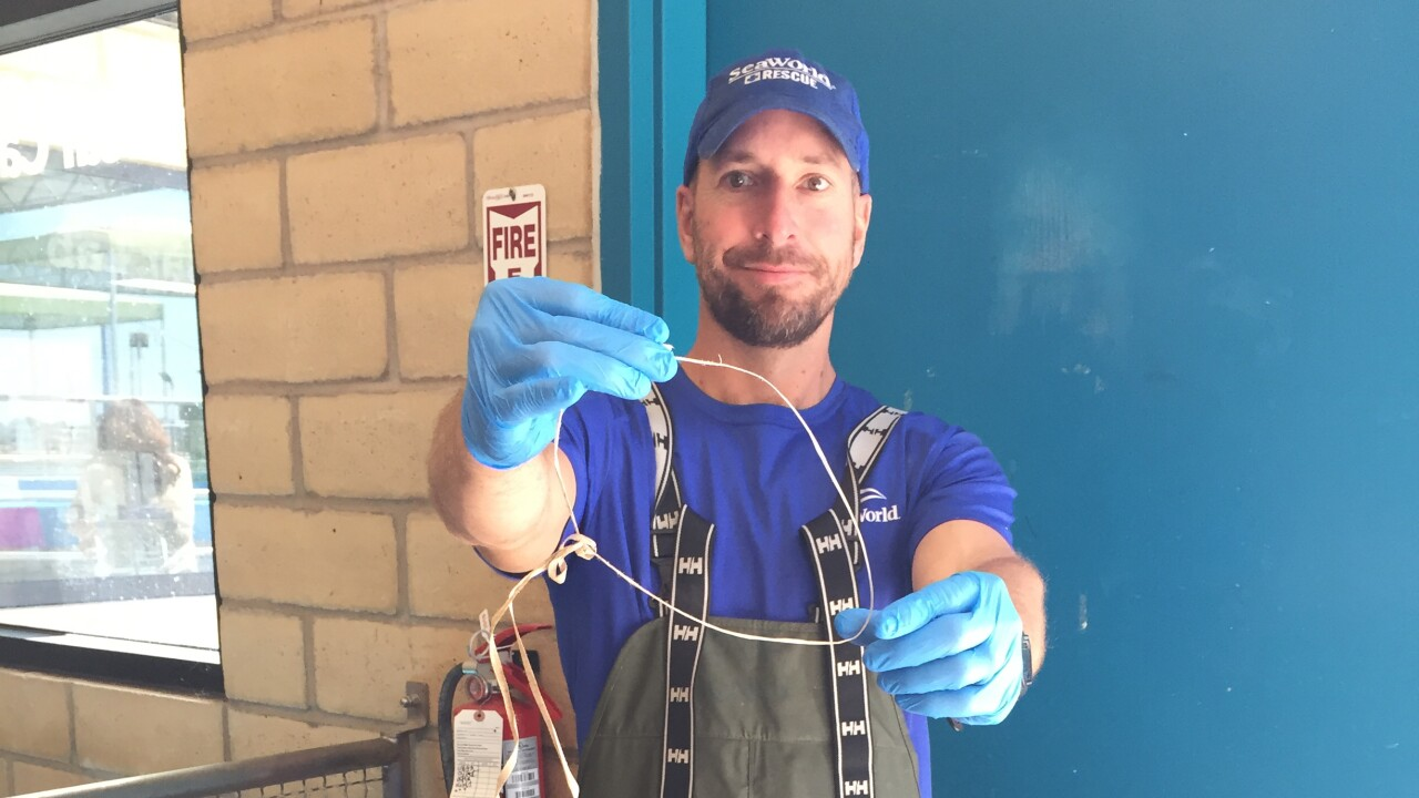 Sea World employee Johnathan