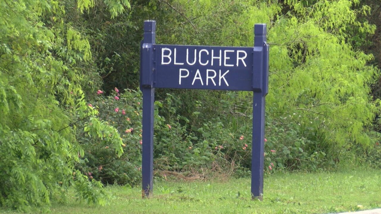 Join volunteers to clean up Blucher Park this Saturday