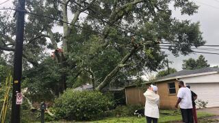 Lafayette Hurricane Laura damage LCG.jpg