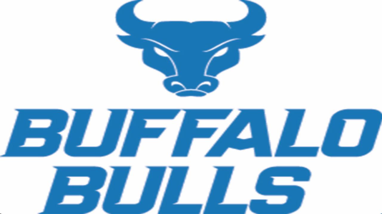 Buffalo is back on UB Bulls logo