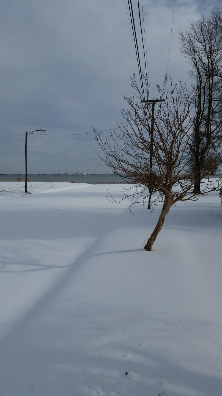 Photos: Share your snow photos, Part3