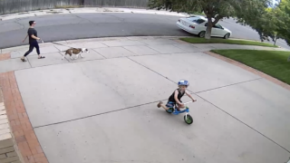 Man Saw A Kid Riding Bike In His Driveway Every Day So He Turned It Into A Racetrack For Him