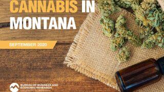 cannabis in montana.jpg