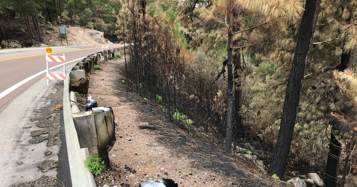 mt  Lemmon Highway damage from Bighorn Fire.'