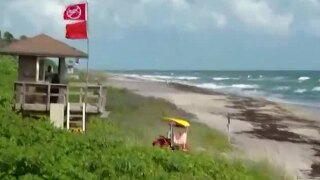Beaches remain closed from Jupiter to Lake Worth