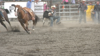 Bozeman Stampede day one highlights
