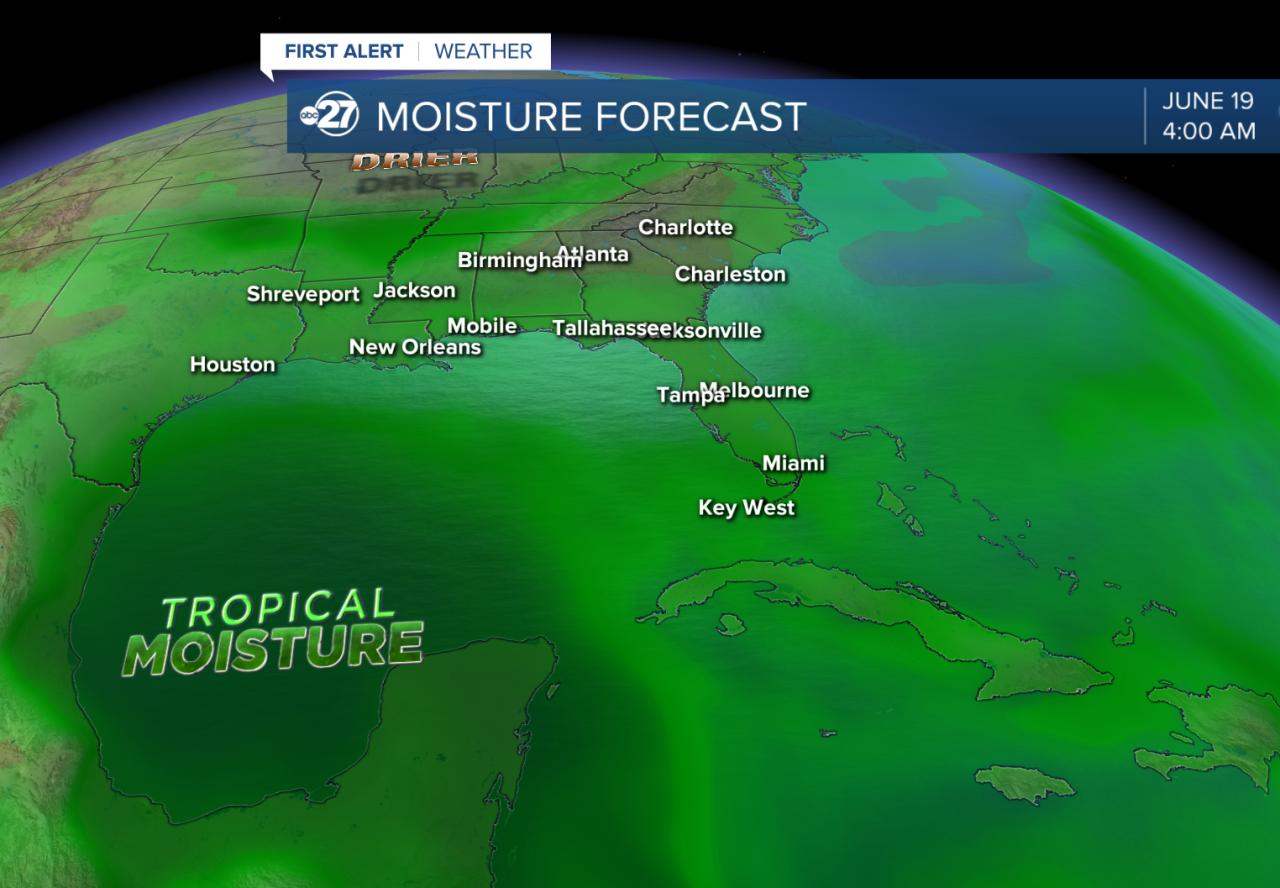 Atmospheric moisture forecast